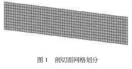 图1 剖切面网格划分